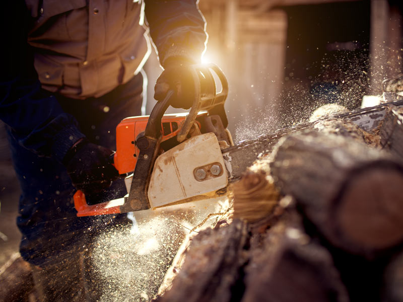 Avertic chainsaw protection trademark